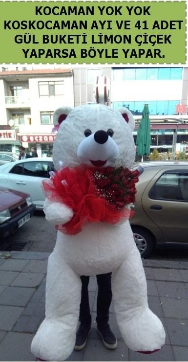 Koskocaman beyaz ayı ve 25 adet gül  İstanbul Ümraniye çiçek siparişi sitesi