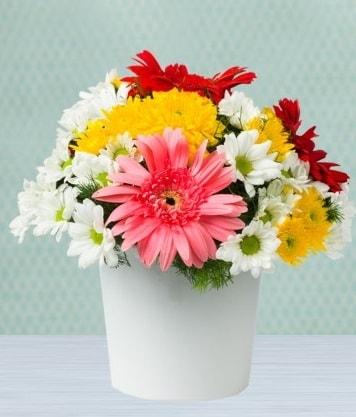 Seramik Vazoda Gelbera ve Papatya  İstanbul Ümraniye çiçek gönderme