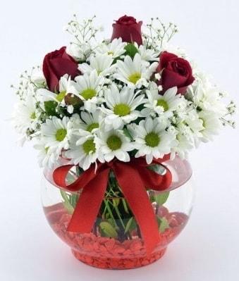 Fanusta 3 Gül ve Papatya  İstanbul Ümraniye internetten çiçek satışı