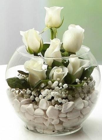 Beyaz Mutluluk 9 beyaz gül fanusta  İstanbul Ümraniye çiçek siparişi sitesi