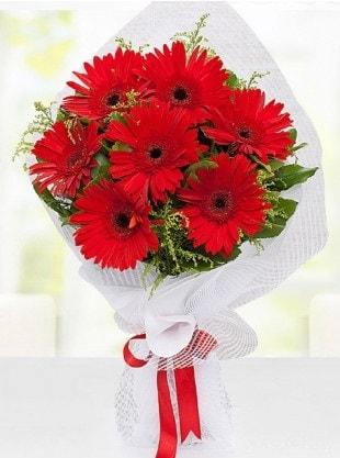 Kırmızı Gelbera Buketi  İstanbul Ümraniye internetten çiçek siparişi