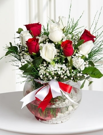 Aşk Küresi  5 beyaz 5 kırmızı gül fanusta  İstanbul Ümraniye internetten çiçek satışı