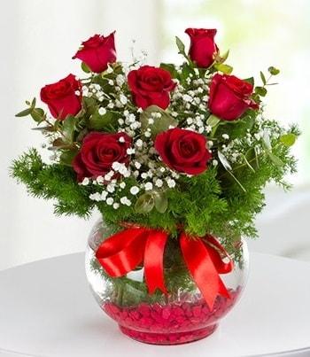 fanus Vazoda 7 Gül  İstanbul Ümraniye çiçek , çiçekçi , çiçekçilik