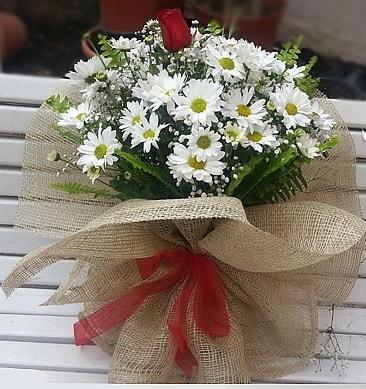 Papatya 1 adet kırmızı gül buketi  İstanbul Ümraniye çiçekçiler