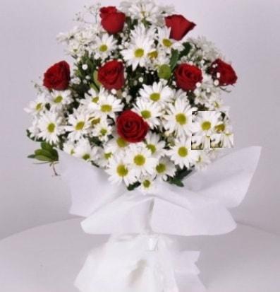 7 adet kırmızı gül ve papatyalar krizantem  İstanbul Ümraniye internetten çiçek satışı