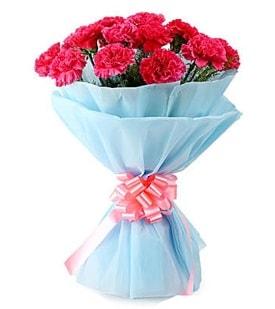 19 adet kırmızı karanfil buketi  İstanbul Ümraniye anneler günü çiçek yolla
