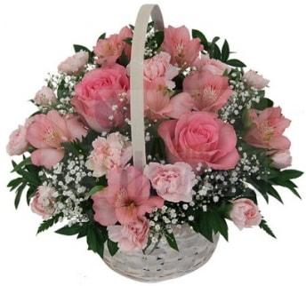 Karışık mevsim sepeti  İstanbul Ümraniye hediye çiçek yolla