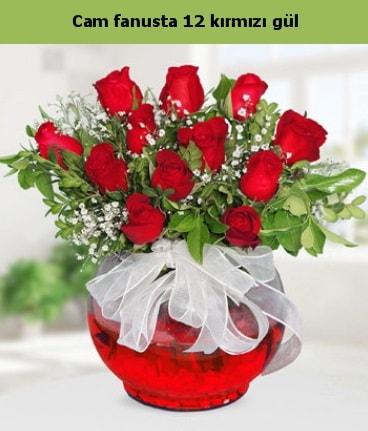 Cam içerisinde 12 adet kırmızı gül  İstanbul Ümraniye internetten çiçek satışı