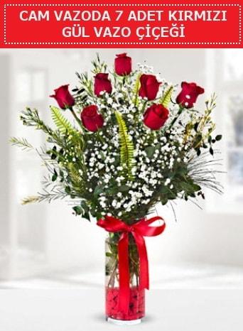 Cam vazoda 7 adet kırmızı gül çiçeği  İstanbul Ümraniye çiçek gönderme sitemiz güvenlidir