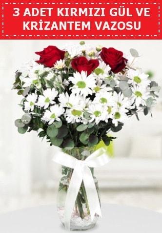 3 kırmızı gül ve camda krizantem çiçekleri  İstanbul Ümraniye çiçek gönderme