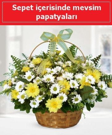 Sepet içerisinde mevsim papatyaları  İstanbul Ümraniye ucuz çiçek gönder