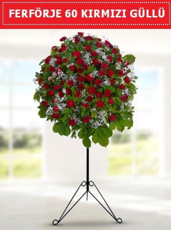 60 Adet kırmızı gülden ferförje  İstanbul Ümraniye ucuz çiçek gönder