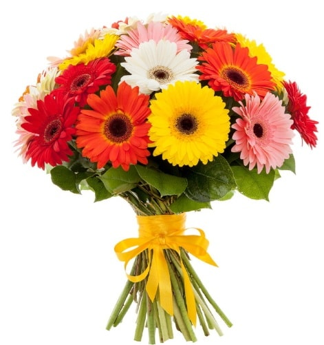 Gerbera demeti buketi  İstanbul Ümraniye çiçek satışı