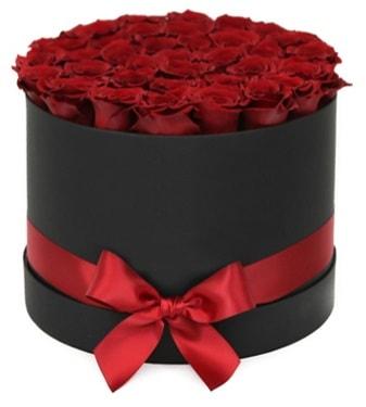 Siyah Kutuda 25 adet kırmızı gül  İstanbul Ümraniye çiçek gönderme sitemiz güvenlidir