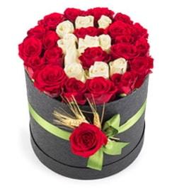 41 adet kırmızı beyaz gül harfli  İstanbul Ümraniye çiçek yolla