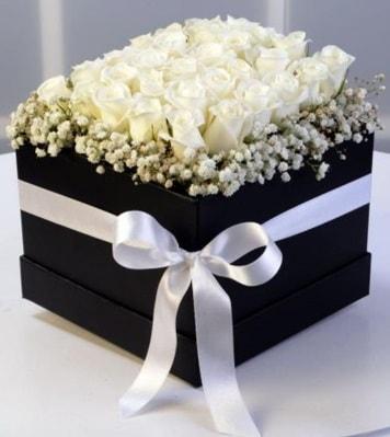 Kare kutuda 19 adet beyaz gül  İstanbul Ümraniye cicek , cicekci
