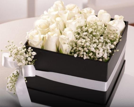 Kutu içerisinde 19 beyaz gül ve cipsofilya  İstanbul Ümraniye çiçek , çiçekçi , çiçekçilik