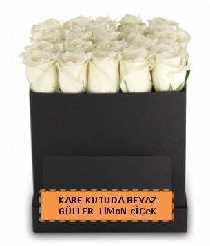 Kare kutuda 17 adet beyaz gül tanzimi  İstanbul Ümraniye çiçek siparişi sitesi