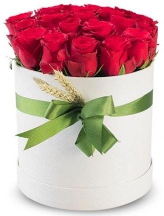 Özel kutuda 25 adet kırmızı gül çiçeği  İstanbul Ümraniye çiçek satışı