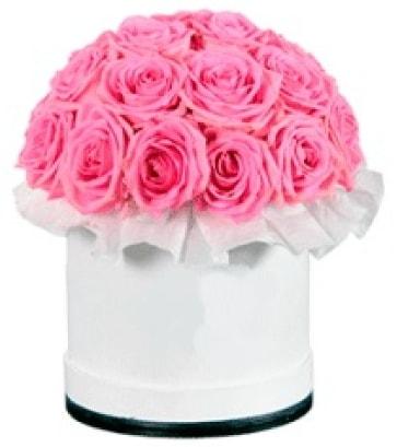 özel kutuda 20 adet pembe gül  İstanbul Ümraniye çiçek gönderme sitemiz güvenlidir