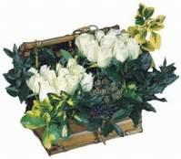 İstanbul Ümraniye çiçekçiler  13 adet sandikta beyaz gül