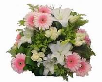 İstanbul Ümraniye kaliteli taze ve ucuz çiçekler  Gül kazablanka gerbera sepet çiçek modeli
